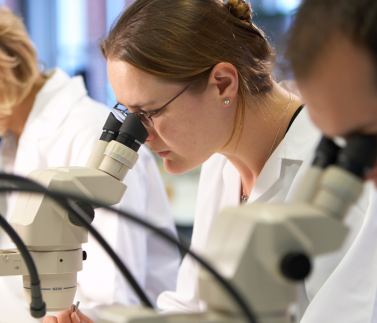 lab-research-microsope-female-sceintists